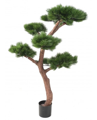 Bonsai Kiefer (UV-Beständig), ca. 150cm