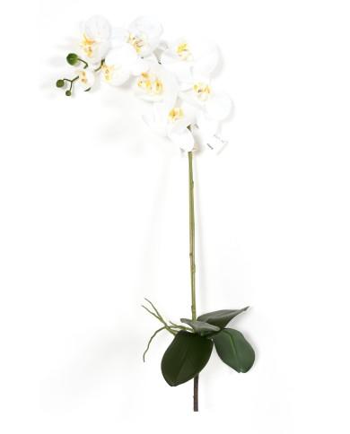 Premium (3d) Phalenopsis, mit 4 Blätter und 8 Blüten, ca. 76cm