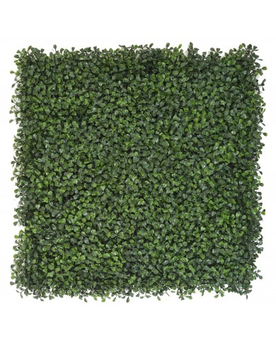 künstliches Buchs-Pflanzwand Paneel, 50x50cm