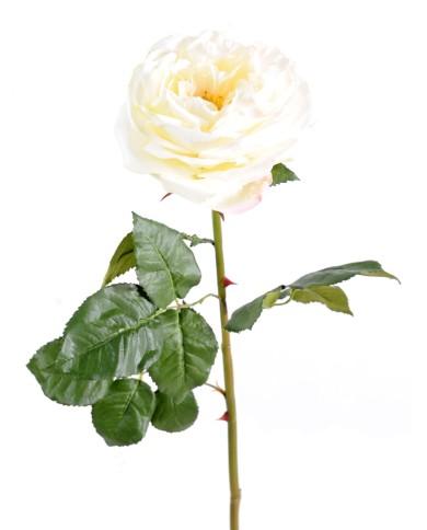 Künstliche Rose creme, ca. 85cm