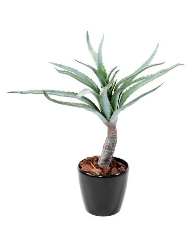Künstliche Aloe, ca. 80cm