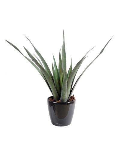 Künstliche Aloe Ferox, ca. 65cm