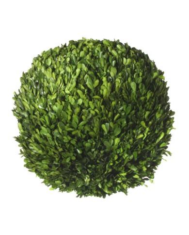 Buchsbaumkugel konserviert, ca. 40cm