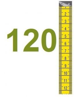 Pflanzen bis 120cm